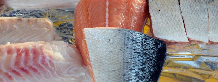 Сортировка рыбы работа в Польше